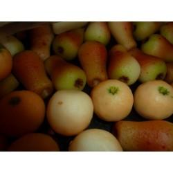Pâte d'amande forme fruits