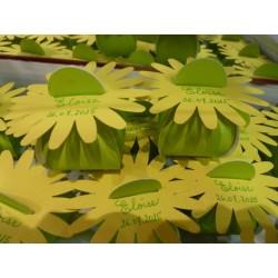 Berlingot en carton vert anis avec soleil